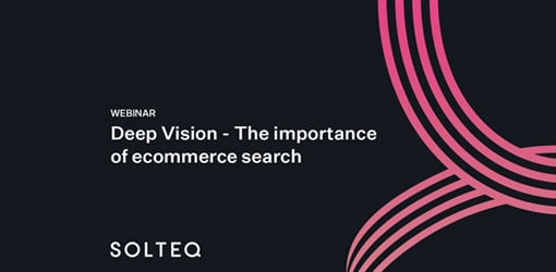 Deep Vision webinaarin kansikuva: The Importance of Ecommerce Search