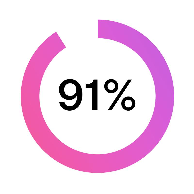91% ikoni