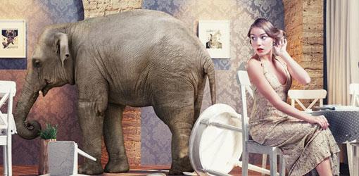 Norsu kaataa huonekuluja ja iltapukuun pukeutunut nainen ihmettelee asiaa tuolissa istuen