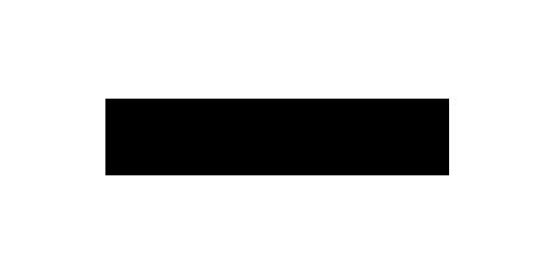 Directo logo