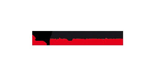 Partner logo Netronic